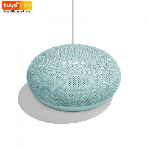 Google Home Mini-2