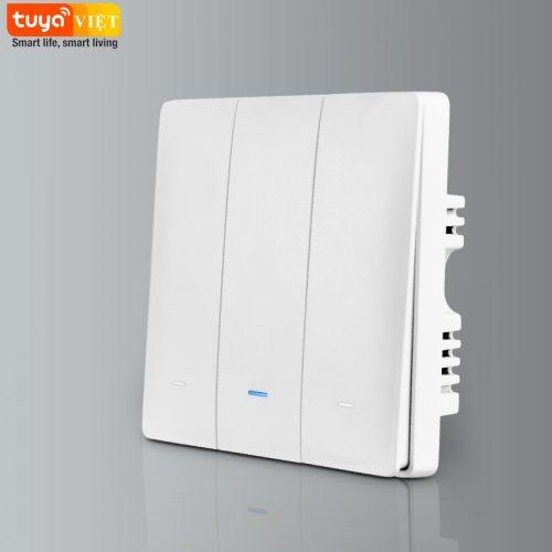 Tuya SW02-UK-3G-While